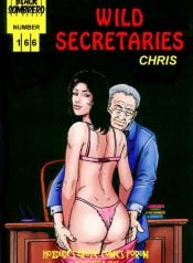 Wild Secretaries – By Chris
